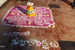 Rangoli-for-pongal